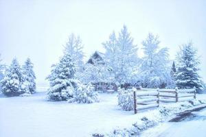 après la neige photo