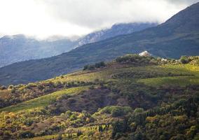 Vignobles à flanc de colline avec maison blanche en Crimée photo
