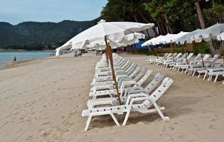 parasols blancs à la plage photo