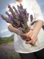 femme tenant des fleurs de lavande