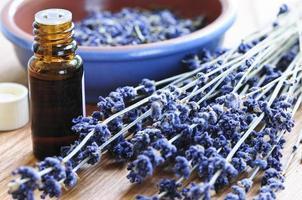 herbe de lavande et huile essentielle photo