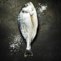 délicieux poisson frais photo