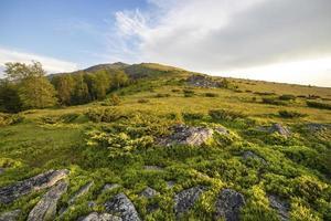 coucher de soleil sur champ vert