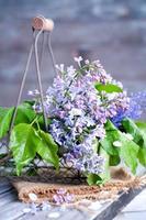 fleurs lilas d'été dans basketon