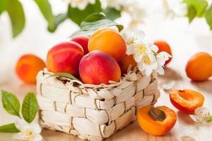 Abricots frais photo