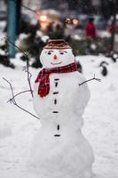le bonhomme de neige souriant