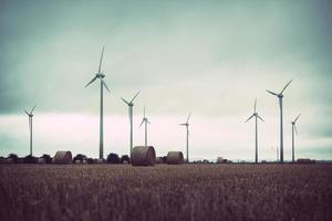 champ de parc éolien photo