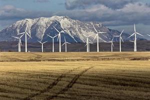 parc éolien canada photo