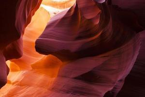 envoyer une quantité de couleurs contrastées de la nature photo