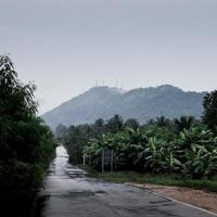 route mouillée avec ciel pluvieux
