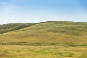 colline herbeuse avec ciel bleu
