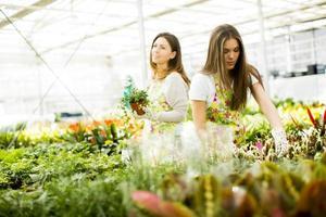 jeunes femmes dans le jardin fleuri photo