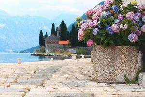 quai de mer de fleurs