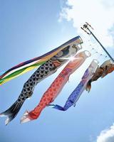 Serpent de carpe (koinobori) et ciel bleu photo