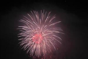 feux d'artifice traditionnels japonais dans le ciel nocturne