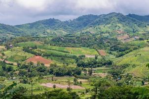 herbe verte des montagnes avec paysage de nuages et de ciel photo