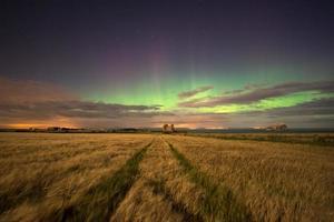 aurores boréales photo