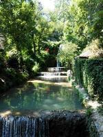 jardin photo