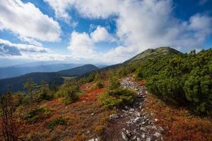 route vers les montagnes avec un ciel bleu dans les Carpates