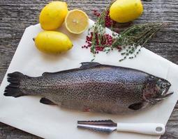 truite arc-en-ciel pour la cuisson photo