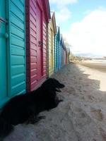 cabines de plage arc-en-ciel photo