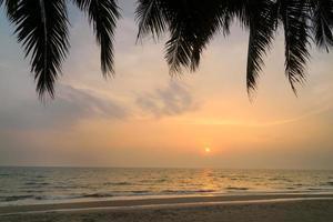 coucher de soleil avec la silhouette des palmiers photo