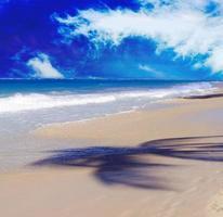 plage de rêve des Caraïbes et silhouette de palmiers. photo