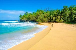 île tropicale paradisiaque - bocas del toro - île de colon