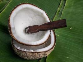 coquille de noix de coco photo