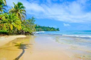 île tropicale paradisiaque - bocas del toro - île de colon photo