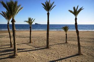playa de poniente de benidorm