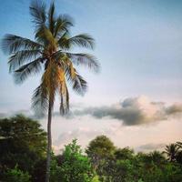 lever du soleil de zanzibar photo
