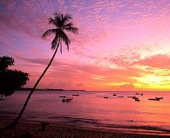 plage au coucher du soleil, baie du mont irvine, tobago. photo