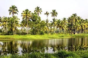 backwaters du Kerala photo