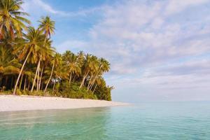 Île inhabitée dans le parc national de shendravasih photo