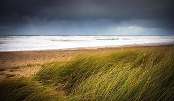plage sauvage photo