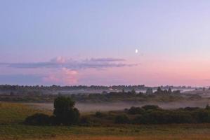 brouillard d'été photo