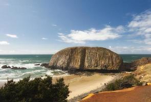 Plage de roche de phoque côtier dans l'Oregon photo