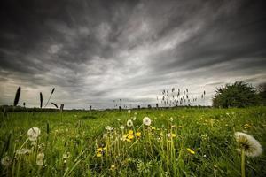prairie avant une tempête