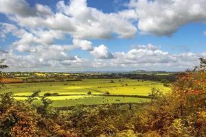 Vue panoramique rurale de champs verts, Salisbury, Angleterre