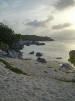 île tropicale photo