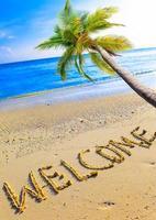 plage il est écrit bienvenue et palmier sur l'océan