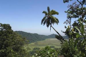 parc national d'arusha en afrique