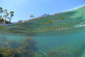 Laguna Shaw's Cove sous l'eau et le littoral