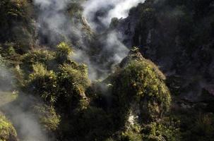 Vallée volcanique fumante en Nouvelle-Zélande