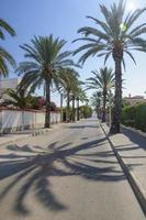 Rue calme et ensoleillée avec vue sur l'océan à Cabo Roig, Espagne photo