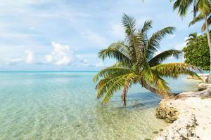 plage exotique photo