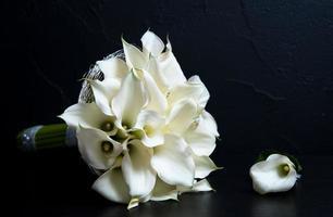 flores blancas en fondo negro
