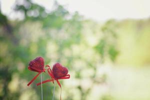 concept d'amour deux coeurs photo