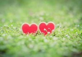 coeur rouge sur l'herbe verte photo